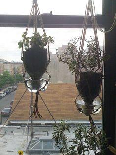 diy sub irrigated hanging planters