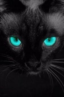 Radiant eyes