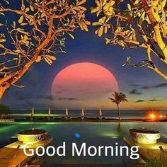 71 Best Good Morning Good Night Wallpapers Images Good Morning