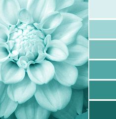 turquoise… Love this color!