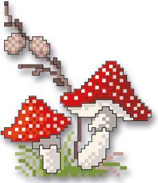 Spätherbst - mushrooms                                                                                                                                                                                 Mehr