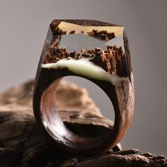 New miniature worlds encased into wooden rings by secret wood http://designwrld.com/new-wooden-rings-secret-wood/