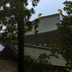 Todai-ji Temple by Hiro Nishikawa on 500px