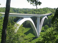 Natchez Trace Parkway Bridge in Williamson County, TN, not far from Nashville. It is the first segmentally constructed concrete arch bridge in the United States
