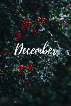 Christmas Phone Wallpaper, Holiday Wallpaper, Winter Wallpaper, December Wallpaper Iphone, Christmas Mood, Christmas Quotes, Iphone Background Wallpaper, Aesthetic Iphone Wallpaper, Happy December