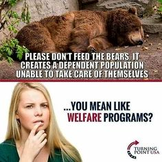 Think about it . Simple, maybe too simple for those afraid to see past their fog Hard Truth, Truth Hurts, It Hurts, Dont Feed The Bears, Political Memes, Political Views, Conservative Politics, Thats The Way, Twisted Humor