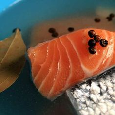 Atlantic Salmon Fillets In a Brine Solution Containing Herbs, Spices and Fresh Garlic Smoked Salmon Brine, Trout Recipes, Grilled Salmon Recipes, Smoked Meat Recipes, Smoked Fish, Seafood Recipes, Basic Brine, Smoked Chicken Wings, Brine Recipe