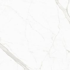 Statuary Porcelain Field Tile | Artistic Tile | Everything you love about Classic White Marble is now available as an ultra thin porcelain slab and field tile. Our Max Fine Collection of polished porcelain maintains the same gold and soft grey veining of our Italian marbles, and the smooth white shine of our Greek marble. They provide an alternative solution to the weight limitations of real marble.