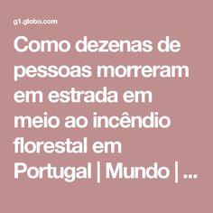 Como dezenas de pessoas morreram em estrada em meio ao incêndio florestal em Portugal   Mundo   G1