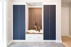 Adding style to a front entry home, by including ink blue doors to cover coats and shoes, drawers for gloves and scarves. Hooks for coats or dog leashes. Entryway Storage, Tall Cabinet Storage, Blue Doors, California Closets, Ink Blue, Front Entry, Cubbies, Open Shelving, Mudroom