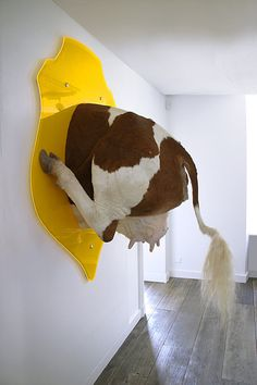 HAHA, I love this so much xD Ghyslain Bertholon - Troché (présenté de face)… Animal Sculptures, Sculpture Art, Bad Taxidermy, Crochet Taxidermy, Illusion Kunst, Cow Art, Art Textile, Animal Heads, Land Art