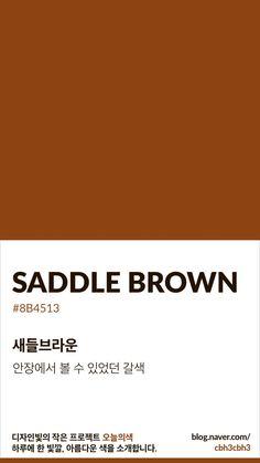 Color of today: Saddle Brown디자인빛의 작은 프로젝트 오늘의색은 하루에 한 빛깔, 아름다운 색과 재... Flat Color Palette, Colour Pallete, Color Schemes, Pantone Colour Palettes, Pantone Color, Brown Pantone, Brown Aesthetic, Colour Board, Color Stories