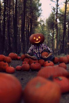 Autumn, pumpkins, ghosts and leaves. Everything fall and Halloween! Halloween Boo, Holidays Halloween, Halloween Pumpkins, Happy Halloween, Halloween Decorations, Halloween Ideas, Haunted Halloween, Samhain Halloween, Modern Halloween