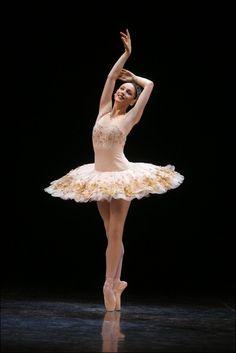 Her tutu is cuute! Abigail Boyle, Royal New Zealand Ballet Ballet Art, Ballet Dancers, Ballerinas, Bolshoi Ballet, Shall We Dance, Just Dance, Tumblr Ballet, Classy And Fab, La Bayadere