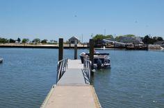 Chesapeake Bay, Oyster Sound