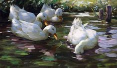 Museum quality reproduction, would make a great addition to any home, office or restaurant decor! Painting: Four Ducks on the Pond Artist: Alexander Max Koester (1864 – 1932) was a German Painter. MASTERPIECE WORKS OF ART REPRODUCED TO MUSEUM QUALITY PAINTINGS ARE PRINTED ON HEAVYWEIGHT