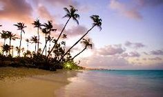 Club Med Punta Cana (Dominican Republic) - Resort (All-Inclusive) Reviews - TripAdvisor...good place to vacation if we have foster children with us, it's good for families.