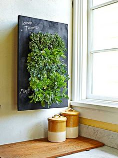 vertikaler pflanzkübel kräuter blumen tafelfarbe küche