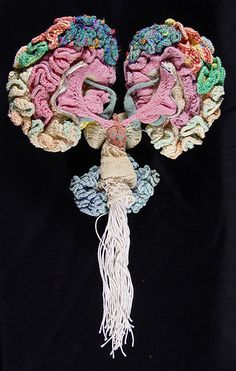 The Museum of Scientifically Accurate Fabric Brain Art ... the world's largest collection of anatomically correct fabric brain art.