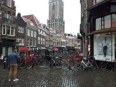 """Training """"Path to Social Entrepreneurship"""" - Orvelte, Netherlands"""
