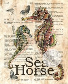 6 x 9 Print of Original, Mixed Media Drawing on Distressed, Dictionary Page This drawing of two sea horses is drawn in sepia ink and created with