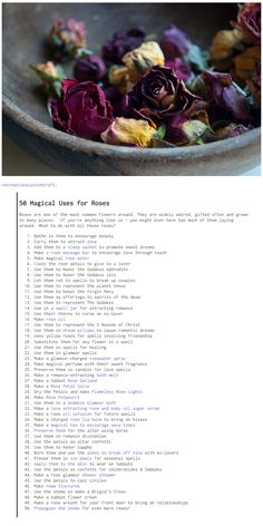 50 Magical Uses for Roses                                                                                                                                                                                 More
