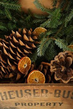 country christmas, place orange slices sprinkled with cinnamon and pine cones in oven, back at low heat and the sap from the cone & the dehydrated orange will seal it making it smell wonderful.  Accent with fresh pine