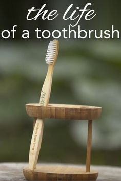 Do you know how many toothbrushes are thrown out annually? It's a small change that we can all make to help the environment from www.goingzerowaste.com