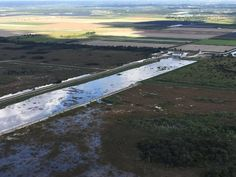 Is Florida moving too slow to save the Everglades?