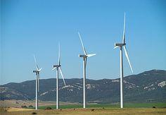Wind farms / parque eólico. #wind #eolico