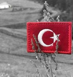 Cute Cat Wallpaper, Full Hd Wallpaper, Galaxy Wallpaper, Ekg Tattoo, Army Video, Turkish Military, Turkish Language, Today Episode, Ottoman Empire