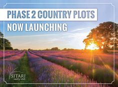 Be first in line to view some of the best located plots within the entire estate. Contact our sales office today for more information - 087 890 0033 Sales Office, Country Estate, Mountains, Travel, Viajes, Destinations, Traveling, Trips, Bergen