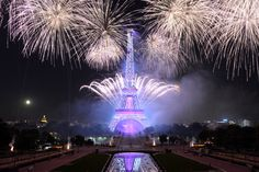 Pin for Later: The Most Compelling Pictures of 2014  Fireworks lit up the Parisian sky for the city's Bastille Day celebrations.