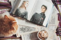 FEYRE and RHYSAND
