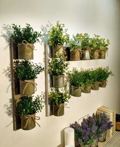 70 Favorite Herb Garden Indoor Design Ideas For Summer Cute Wall Decor, Rustic Wall Decor, Rustic Walls, Herb Garden, Indoor Garden, Indoor Plants, Herb Planters, Metal Planters, Country Chic Decor