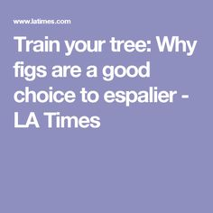Train your tree: Why figs are a good choice to espalier - LA Times