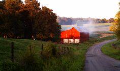 Fall in Robertson County