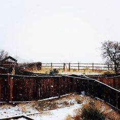 My old fence after the first winter storm. Love snow!  #winter #snow #beautiful #oldfence
