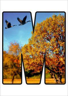 Autumn Activities, Alphabet, Font Styles, Preschool, Symbols, Crafts, Decor, School, Lyrics