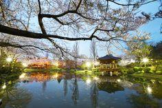 CNN '한국에서 가봐야 할 아름다운 장소' 11위에 선정된 경주 보문정 (사진_한국관광공사 이범수)