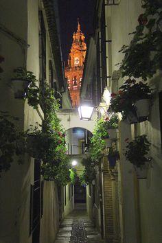 Callejón de Córdoba ~ Cordova, Spain