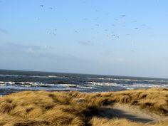 True North, Denmark