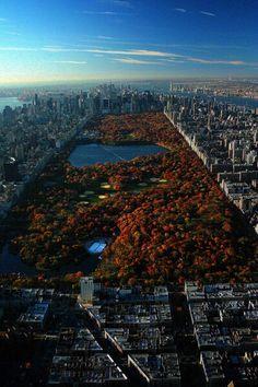 New York City - #LowPressure