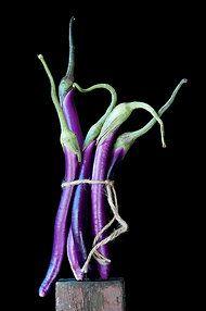 eggplant by Lynn Karlin