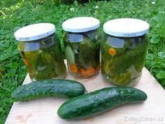 Zavařené okurky kvašáky - ZiskejZdravi.cz Pickles, Cucumber, Food, Essen, Meals, Pickle, Yemek, Zucchini, Eten
