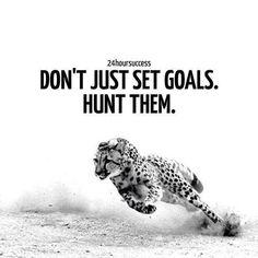 Hunt them!