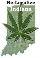 Industrial Hemp Could be Indiana's Next Cash Crop