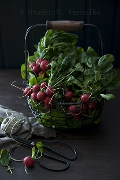 Get working in your garden. Time to sow your radishes !!!!