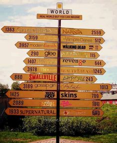 Choose a world (I choose Supernatural, Harry Potter, Teen Wolf, The Vampire Diaries and Percy Jackson)