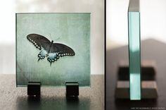 iPhoneArt Launches Kickstarter to Make Daguerrotype and Ambrotype Prints Available to All